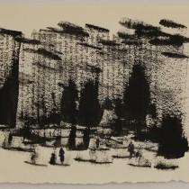 Forêt 4